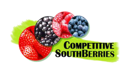 Competitive South Berries